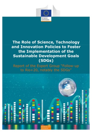 Report of the expert group 'Follow up to Rio+20, notably the SDGs'. Source: European Commission